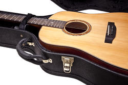 The Tom Rush Signature Dreadnought in case
