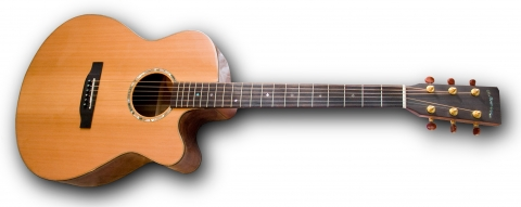 Dionisio cut-a-way acoustic guitar