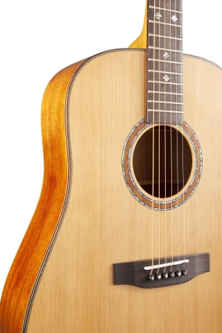 The Canadian Songwriter dreadnought